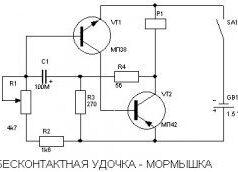 mormishka1-250x172-4382328